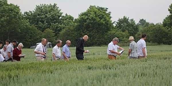 Group Meetings Scottish Agronomy