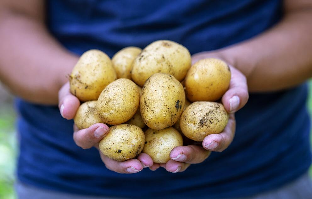 Join Us Scottish Agronomy